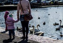Móðir og barn gefa öndunum brauð