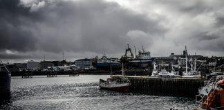 Höfnin í reykjavík